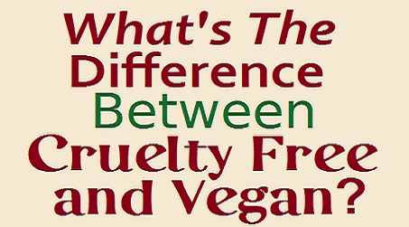 Is Make Up For Ever Cruelty Free Test